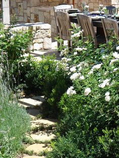 Stone and Roses    Iceberg roses, boxwood and lavender can add to the look of a Mediterranean garden.