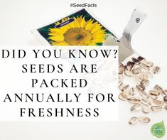 Packet seed companies are required to label their seed packets for the year they were packed. This ensures you get fresh seed with high germination when you buy from reputable seed companies like NGB members.  #seedfacts Backyard Plan, Backyard Landscaping, Seed Catalogs, Organic Gardening Tips, Growing Seeds, Seed Packets, Different Flowers, Garden Seeds, Unique Recipes