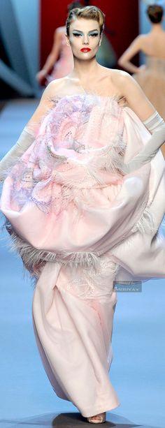 Christian Dior.SPRING  COUTURE 2011.  V