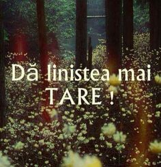 Da linistea mai tare :D Funny Quotes, Life Quotes, Qoutes, Christ In Me, Just You And Me, Strong Words, Inspirational Quotes About Love, Special Quotes, Drama