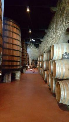 Cave de Vinho do Porto  Portugal