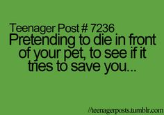 pretending to die in front of your pet, to see if it tries to save you...... HAHAHAHAHAHA- YYEEEESSSSSSSSSSSS