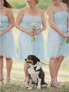 Vestidos para damas de honor   Preparar tu boda es facilisimo.com