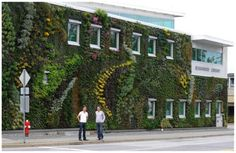 Living Wall by Intechopen.com