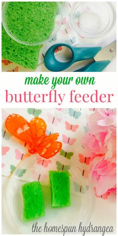 Budget Friendly DIY Butterfly Feeder Craft for Kids - Modern Butterfly Food, Butterfly Feeder, Make Your Own, Make It Yourself, How To Attract Hummingbirds, Diy For Kids, Kids Fun, Planting Flowers, Projects To Try