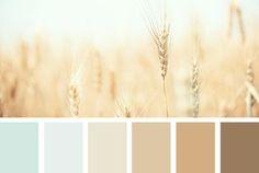 wheat tones