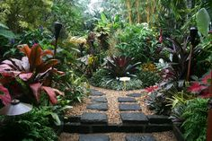 MY ULTIMATE! Wish I could walk through this garden!