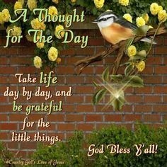 Take life day by day, and be grateful for the little things.