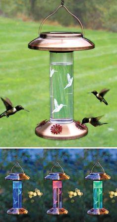Solar Lighted Hummingbird Feeder, Hummingbird Feeder, Solar Bird Feeder | Solutions