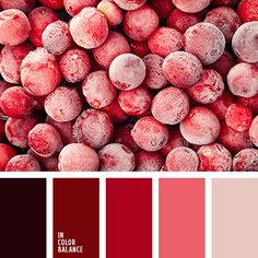 Background & Style Color Palette (first 3 from left) Colour Pallette, Colour Schemes, Color Combinations, Maroon Color Palette, Color Balance, Design Seeds, Colour Board, Coral Color, Light Red Color
