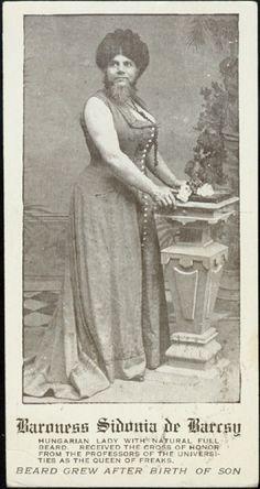 Baroness Sidonia de Barcsy