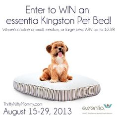 Thrifty Nifty Mommy: Essentia Pet Bed {Giveaway}