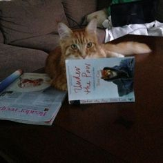 A cat who normally only reads cookbooks and chick-lit, but it making a reluctant exception in the case of my first cat book.