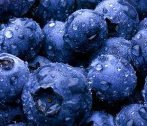 Blueberries are perennial flowering plants with indigo-colored berries from the section Cyanococcus within the genus Vaccinium (a genus that also includes cranberries and bilberries).