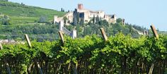 The word soave is an adjective, before being the proper name of the town of Soave. On the Italian vocabulary you find the following definition: a delicate sweetness, which leads to feelings of tender abandonment, or calm and placid serenity.