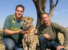 Paul Walker at The Lion Park in Johannesburg on August 9, 2011.