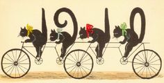 Vintage Illustration Vintage illustration of four black cats riding a bike in tandem - Cool Cats, Gatos Cool, Black Cat Art, Black Cats, Gato Anime, Bicycle Art, Bicycle Design, Vintage Cat, Vintage Black