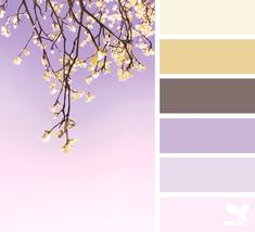 Color Nature | Design Seeds