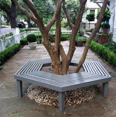 Bench Around Tree Samples