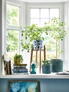 Books And Plants On The Window Sill | Bibby And Brady