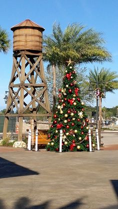 The Holiday Tree at Brownwood.  [The Villages, FL]