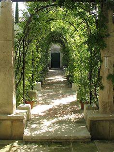 ~Les jardins provençaux de Pierre Bergé