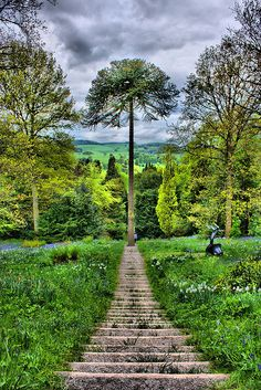 Chatsworth house gardens. I have waked the gardens there and wished I would meet my Mr Darcy. So what if I am a grandma? We Can always wish.