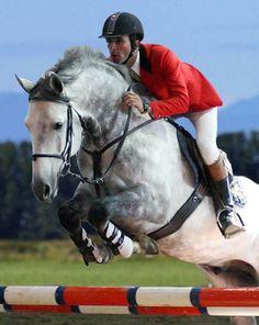 Hanovarian showjumping breeding program stallion Raffaello standing with Synergy Sporthorses  Onsite Digital photo