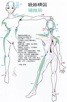 陽維脈-Yang link vessel, Acupuncture points-