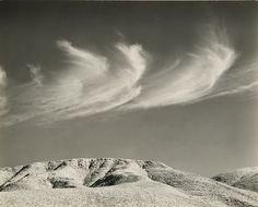 Texas Springs, Death Valley, 1949, Edward Weston.