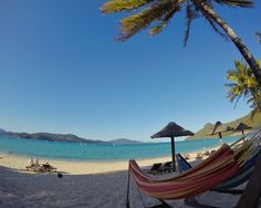 Life is too short . to not lie in a hammock by the ocean. Life is too short to wait. Popular Holiday Destinations, Hamilton Island, Great Barrier Reef, Life Is Short, Ocean Life, Hammock, Diving, Bliss, Outdoor Decor