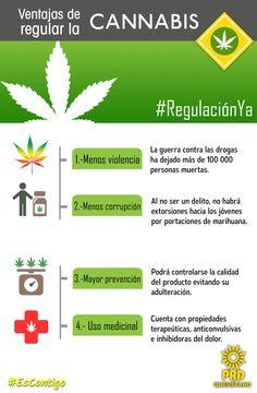 Regular la marihuana es necesario, con ello lograremos que se disminuyan la violencia y la corrupción.  #RegulaciónYa