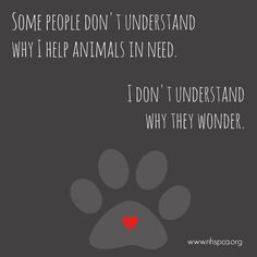 Some people don't understand why I help animals in need. I don't understand why they wonder ...                                                                                                                                                                                 More
