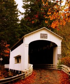 'WildCat Covered Bridge, Oregon views*' by aussiedi Portland, Country Life, Country Roads, Old Bridges, Into The West, Old Barns, Covered Bridges, Architecture, Belle Photo