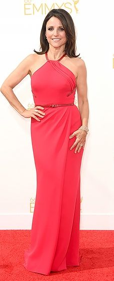 Julia Louis Dreyfus stood out in a raspberry red Carolina Herrera dress and a Lee Savage clutch at the 2014 Emmys.