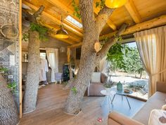 Atsipopoulo house rental - The living room is cosy and offers view to the jacuzzi terrace & the courtyard! Treehouse Wedding, Rethymno Crete, Building A Treehouse, Small Terrace, Old Oak Tree, Stay The Night, Pergola, Villa
