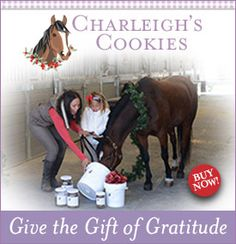 On the Ninth Day of Christmas, Velvet Rider brought to me. a giveaway from Equestrianista Apparel! Equestrian Gifts, Cookies, Baseball Cards, Christmas, Crack Crackers, Xmas, Biscuits, Navidad, Cookie Recipes
