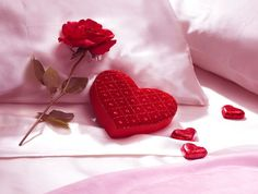 You are surprised with a romantic evening, how would you respond?