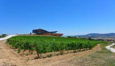 En este sitio tan precioso se come y te atienden de maravilla. Ojo al dato restaurante Le Naturel (bodegas Aroa). Menú de aúpa vistas espectaculares y buen vino. Eso sí bien fresquico ;) Wonderfull place with a great restaurant. Le Naturel. . . . #wine #navarra #igersnavarra #instatravel #travelgram #traveller #roadtrip #instagram #Iamatraveler #lonelyplanet #winetravel #hallazgosemanal