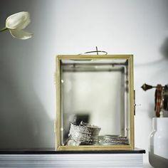 BOMARKEN Vitrinekistje, goudkleur - IKEA Glass Display Box, Display Boxes, A Shelf, Shelves, Ikea Design, Bridal Shower Welcome Sign, Epoxy Coating, Wardrobe Storage, Cabinets