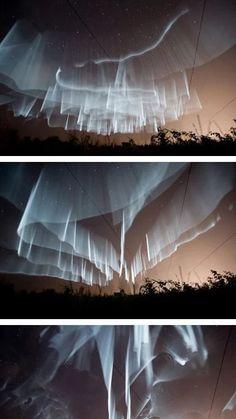 Auroral Borealus