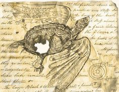 Flying Turtle Dream By Nick Bantock