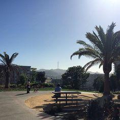 SF Park Life.