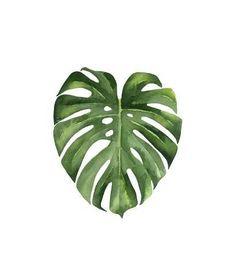 Watercolor Flowers, Watercolor Art, Leaf Prints, Art Prints, Neon Licht, Leaf Drawing, Plant Painting, Botanical Art, Find Art