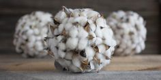 Excited to share this item from my shop: Cotton Ball (READY TO SHIP) - Cotton Boll - Decorative Ball - Cotton - Bowl Fillers- Farmhouse Table Decor - Rustic Decor Farmhouse Table Decor, Rustic Decor, Farmhouse Ideas, Vintage Decor, Preserved Boxwood, Cotton Bowl, Cotton Decor, Cotton Fields, Bowl Fillers