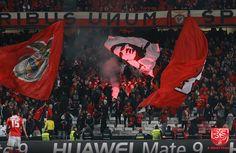 A Minha Chama: 2016-2017 21ªJ: SL Benfica 3 Arouca 0