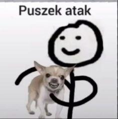 Polish Memes, Weekend Humor, Funny Mems, Aesthetic Eyes, Very Funny, Meme Faces, Man Humor, Reaction Pictures, Cringe
