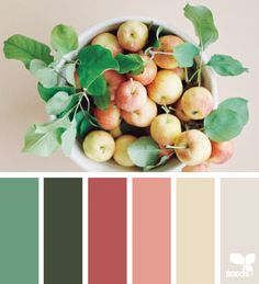Image about green in color palette by skylar sage Color Schemes Colour Palettes, Colour Pallette, Color Combos, Design Seeds, Diy Pallet Projects, Pallet Ideas, Color Balance, Color Of Life, Color Theory