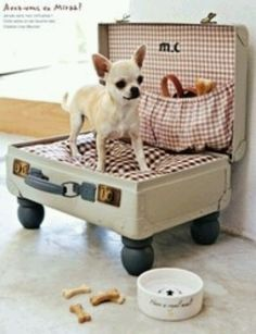 vintage suitcase upcycled into dog bed