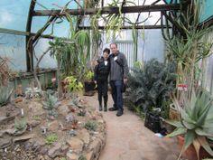 The Ruth Bancroft Garden Walnut Creek California